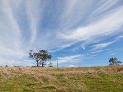 Lot 8, 40496 Tasman Highway, St Leonards, Tas 7250