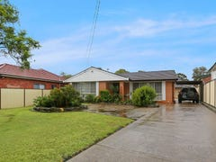 10 Campbell Hill Road, Chester Hill, NSW 2162