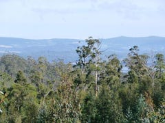 Lot 1 Stonehenge Road, Stonehenge, Tas 7120