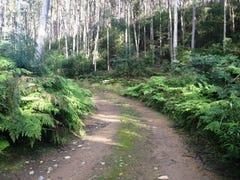 540 Davis Gully Road, Four Mile Creek, Tas 7215