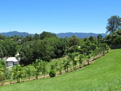 3 McNally Street, Bellingen, NSW 2454