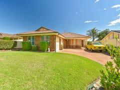 7 Ayrshire Place, Narellan Vale, NSW 2567