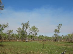 835 Litchfield Park Road (Finniss Valley), Batchelor, NT 0845