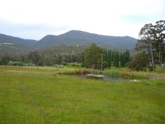 Lot 2, 34 Mapley Road, Lachlan, Tas 7140