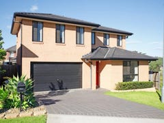 41 Dodonea Circuit, Mount Annan, NSW 2567