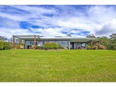 180 Johnsens Road, Dorrigo, NSW 2453
