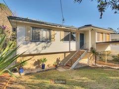 67 Garro Street, Sunnybank Hills, Qld 4109