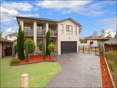 12 Ibis Place, St Clair, NSW 2759