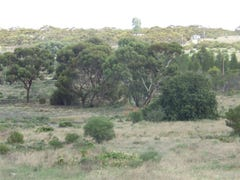Lot 3 Cadell Valley Road, Cadell, SA 5321