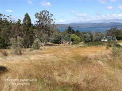 Lot 3 Bruny Island Road, Dennes Point, Tas 7150