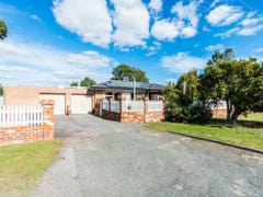 293 Spearwood Avenue, Spearwood, WA 6163