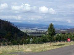 24 Skyline Avenue, Grindelwald, Tas 7277