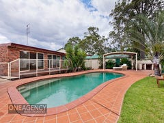 14 Martin Street, Emu Plains, NSW 2750