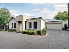 18B Primrose Terrace, Rosslyn Park, SA 5072