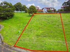 Lot 22, Hingston Close, Lake Heights, NSW 2502