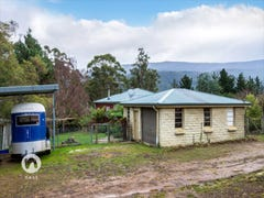 114 Gums Road, Mountain River, Tas 7109