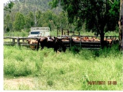 FORREST PARK, Willows, Qld 4702
