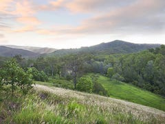 Lot 1 Branch Rd, Kobble Creek, Qld 4520