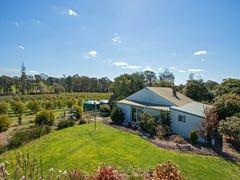 955 Whittlesea-Kinglake Rd, Kinglake West, Vic 3757