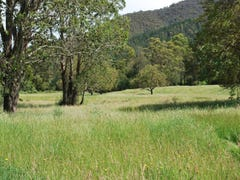 Lot 1 Morses Creek Road, Wandiligong, Vic 3744