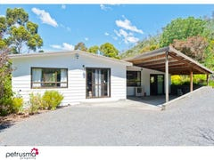 99 Black Hills Road, Magra, Tas 7140