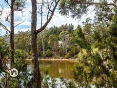52 Lumsdens Road, Waterloo, Tas 7109