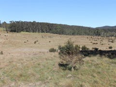 Lot11 4608 Kings Highway, Braidwood, NSW 2622