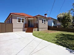 73 Virgil Ave, Chester Hill, NSW 2162