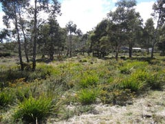Lots 23 and 24 Brewis Place, Lake Leake, Tas 7210