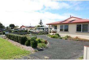 292 St Helens Point Road, Stieglitz, Tas 7216