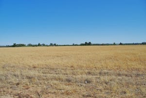 Lot 45 Ibis Road, Renmark, SA 5341