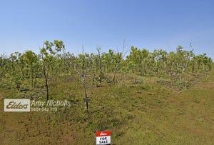1595 Coach Road, Eva Valley, NT 0822