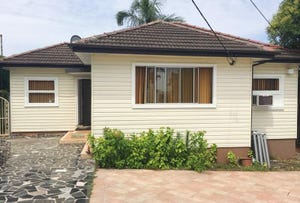 113 Miller Road, Chester Hill, NSW 2162