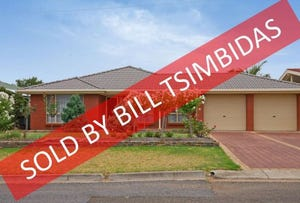 3 Taurus Crescent, Modbury Heights, SA 5092