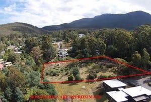 44 Avon Road, South Hobart, Tas 7004