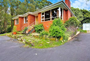 307 Strickland Avenue, South Hobart, Tas 7004