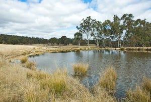 Brushgrove, Uralla, NSW 2358