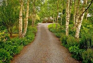 80 Den Road, Mole Creek, Tas 7304