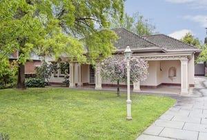 19 Stirling Street, Tusmore, SA 5065