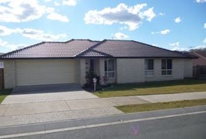 3 Aspect Terrace, Springfield Lakes, Qld 4300