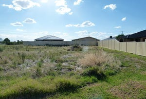 9 Dunstan Close, Forbes, NSW 2871