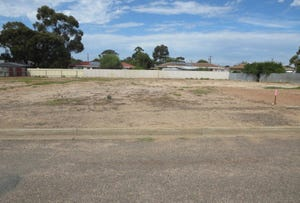 A42 Neumann Ave, Murray Bridge, SA 5253