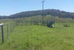391 Stone Hut Road, Kingstown, NSW 2358