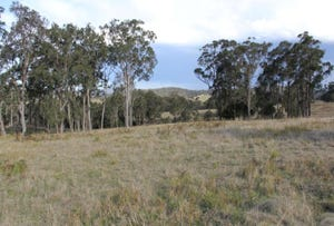 Lot 2 Wellington Lookout Road, Tenterfield, NSW 2372