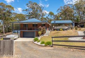 121 Mount Rumney Road, Mount Rumney, Tas 7170