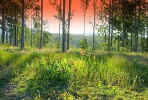 Lot 479 Arborten Road, Glenwood, Qld 4570