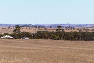 Narembeen, address available on request