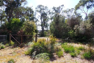 Lot 1 Gardiner Street, Squeaking Point, Tas 7307