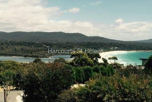 Wedge Court Subdivision, Binalong Bay, Tas 7216