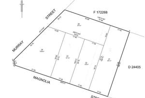199 Murray Street & 2 Magnolia Street, Tanunda, SA 5352
